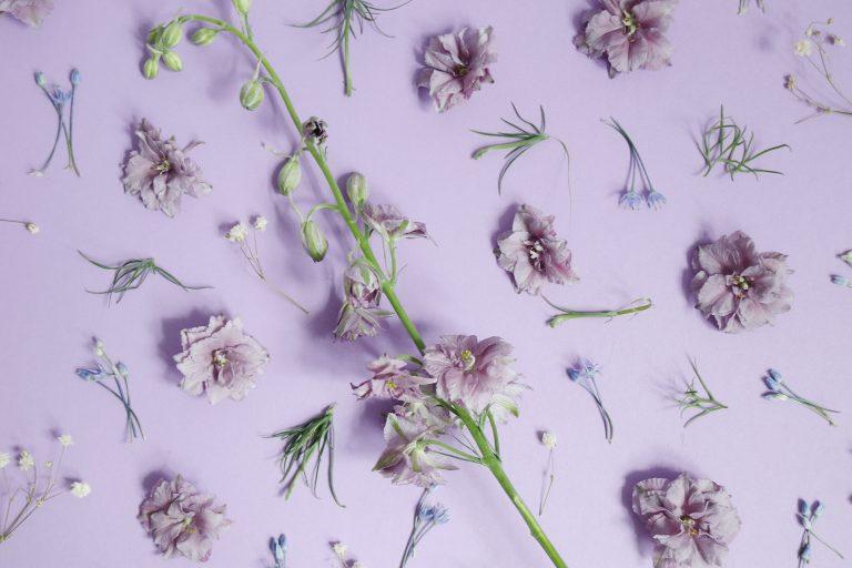 Wishlist : les nouveautés beauté du printemps